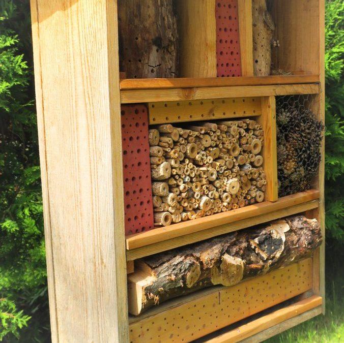 Insektenhotel wird eingeweiht