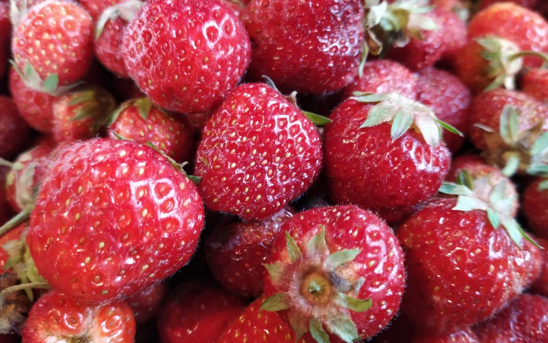 Erdbeeren sind lecker und gesund